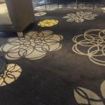 A+ carpet