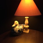 Magic duck.